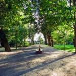 Jardins do Palácio de Cristal (www.portoturismo.pt)