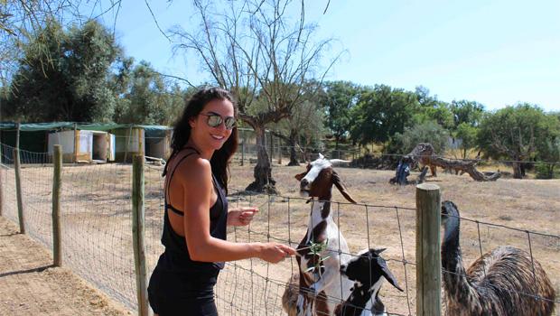 Em viagem com Vanessa Martins: última semana