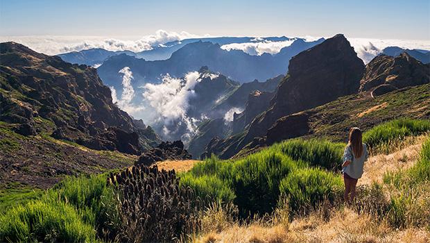 Madeira deslumbrante