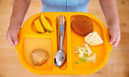 Ordem dos Nutricionistas quer especialistas a tratar de ementas escolares