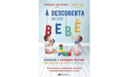 'À Descoberta do seu Bebé', editora Manuscrito, €13,90
