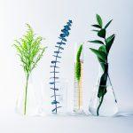 Redken-2018-Natural-Science-Beakers-CMYK