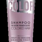 JLD_Go Color_Shampoo_PVP_19,5€